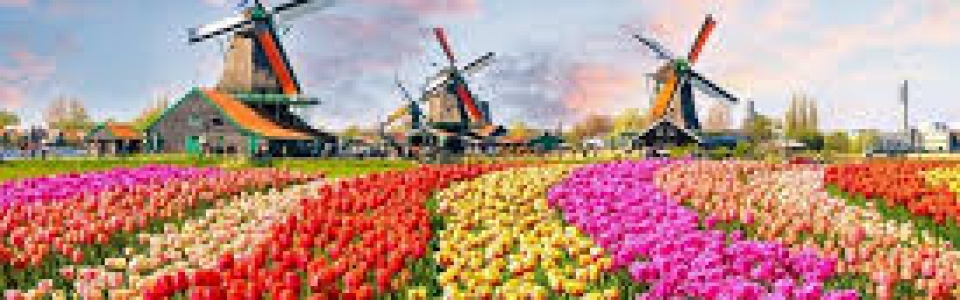 Netherlands2